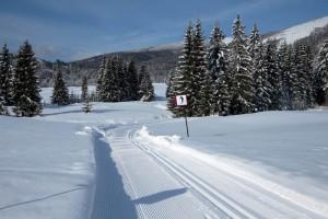 bežecké-lyžovanie-Tále-004